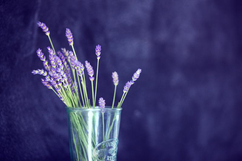 Lavender Lemonade Fizz
