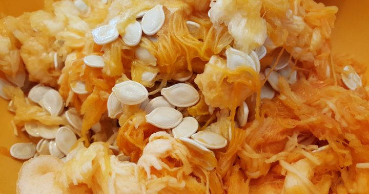 Toasted Pumpkin and Squash Seeds
