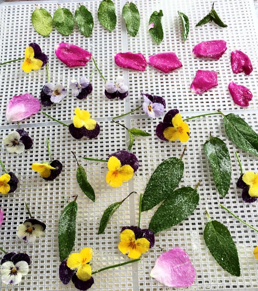 Edible Flower Feast,