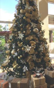 Care of Fresh Christmas Trees